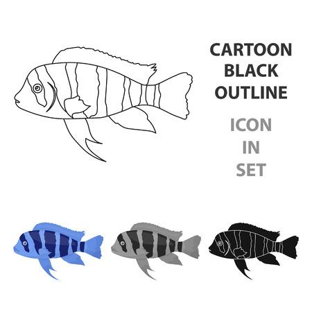 cyphotilapia: Frontosa Cichlid (Cyphotilapia Frontosa) fish icon cartoon. Singe aquarium fish icon from the sea,ocean  cartoon.