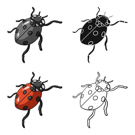 Ladybug is an arthropod.The insect,ladybug single icon in cartoon style vector symbol stock isometric illustration .