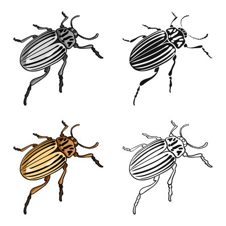 コロラド州翅昆虫。コロラド州、有害な昆虫単一漫画スタイル ベクトル シンボル ストック イラスト等尺性のアイコン。  イラスト・ベクター素材