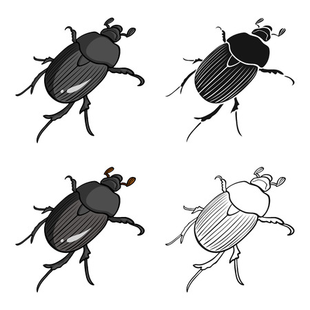 coleoptera: Bug is a coleopterous insect.Arthropods insect,  single icon in cartoon style vector symbol stock isometric illustration . Illustration