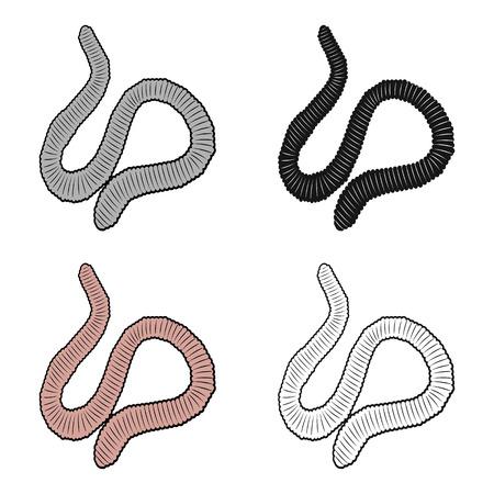 A worm, a boneless animal. Earthworm single icon in cartoon style vector symbol stock isometric illustration .