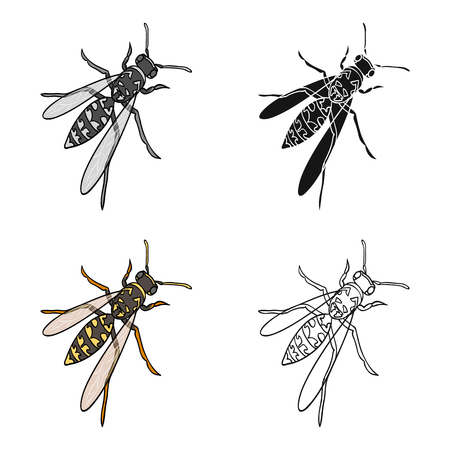 Wasp, hymenopteran insect.Wasp, stinging insect single icon in cartoon style vector symbol stock isometric illustration . Çizim