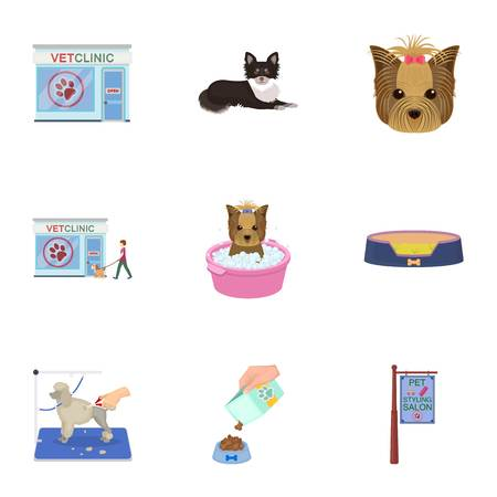 Walking with a dog, a vet clinic, a dog haircut, a puppy bathing, feeding a pet. Vet clinic and pet care set collection icons in cartoon style vector symbol stock illustration . Illustration