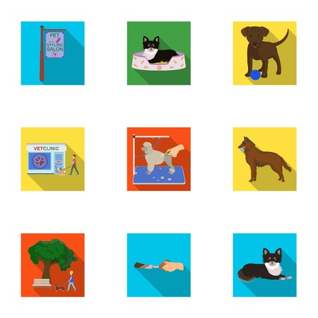 Walking with a dog, a vet clinic, a dog haircut, a puppy bathing, feeding a pet. Vet clinic and pet care set collection icons in flat style vector symbol stock illustration . Illustration