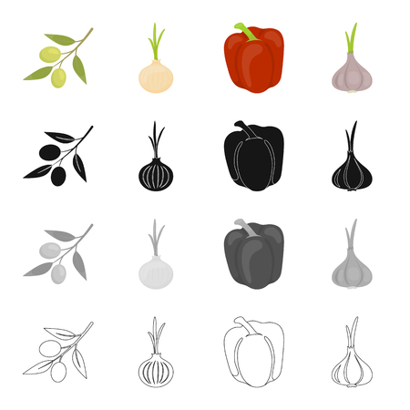 Salad, vegetarian, food and other web icons in cartoon style.