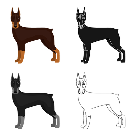 hounds: Doberman, single icon in cartoon style.Doberman, vector symbol stock illustration web. Illustration