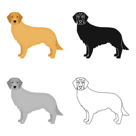 hounds: Retriever single icon in cartoon style.Retriever vector symbol stock illustration web.