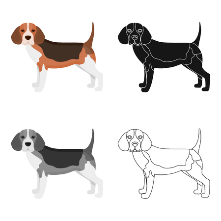 hounds: Beagle,single icon in cartoon style.Beagle, vector symbol stock illustration web. Illustration