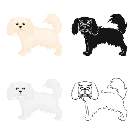 hounds: Spaniel, single icon in cartoon style.Spaniel vector symbol stock illustration web. Illustration