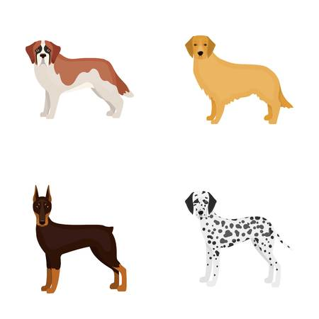 Doberman,dog, domestic, and other web icon in cartoon style.Beagle, retriever, dolmatian, icons in set collection.