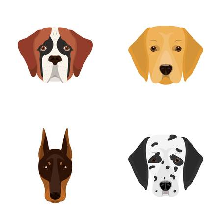 Muzzle of different breeds of dogs.Dog of the breed St. Bernard, golden retriever, Doberman, Dalmatian set collection icons in cartoon style vector symbol stock illustration web.