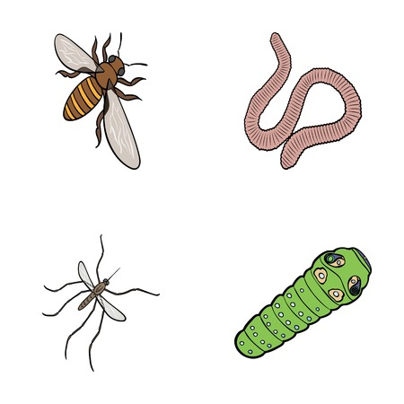 Arthropods insect mosquito, bee.Earth worm, caterpillar,vermicular set collection icons in cartoon style vector symbol stock isometric illustration web.