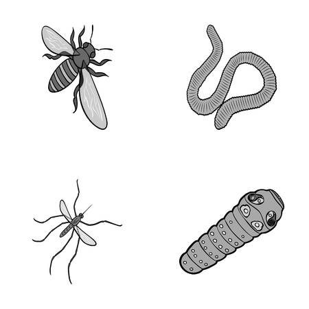 Arthropods insect mosquito, bee.Earth worm, caterpillar,vermicular set collection icons in monochrome style vector symbol stock isometric illustration web.