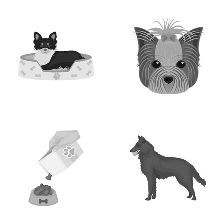 A dog in a lounger , a muzzle of a pet, a bowl with a feed, a sheepdog with a ball in his teeth. Pet ,dog care set collection icons in monochrome style vector symbol stock illustration web.