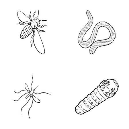 Arthropods 곤충 모기, 꿀벌입니다. 어스 웜, 애벌레, vermicular 세트 개요 아이콘 스타일에서 컬렉션 아이콘 벡터 기호 주식 아이소 메트릭 그림 웹.
