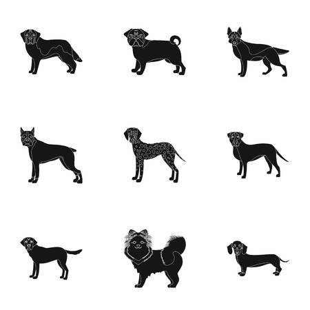 Sheepdog, dachshund, bernard, and other web icon in black style.Spitz, boxer, beagle, icons in set collection. Illustration