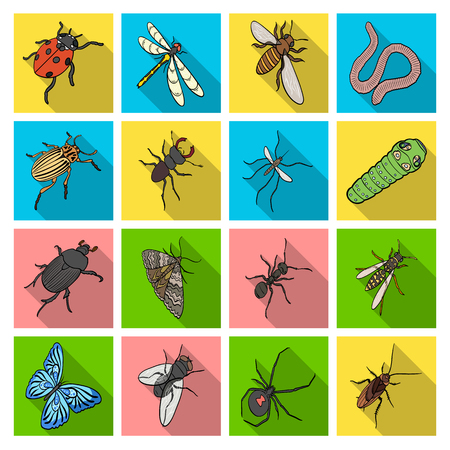 wasp, bee, ant, fly, spider, mosquito and other insect species. Various insects set collection icons in flat style vector symbol stock isometric illustration web. Иллюстрация