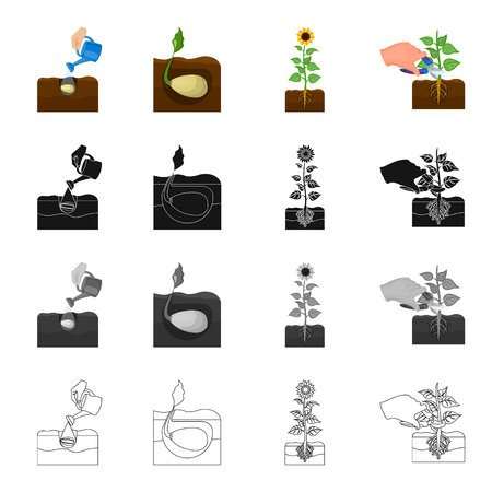 Planting and watering the grain in the garden, sprouted grain in the ground, sunflower on the farm, pruning the plant. Farm and vegetable garden] set collection icons in cartoon black monochrome outline style vector symbol stock illustration isometric .