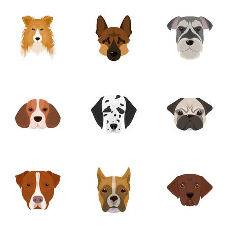 Doberman, Dalmatian, Dachshund, Spitz, Stafford and other breeds of dogs.Muzzle of the breed of dogs set collection icons in cartoon style vector symbol stock illustration web. Illustration