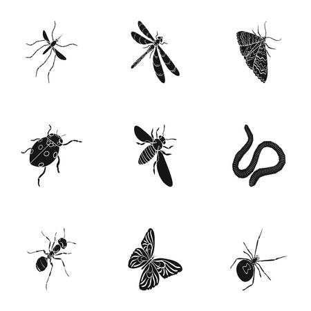 Beetle, wasp, bee, ant, fly, spider, mosquito and other insect species. Various insects set collection icons in black style vector symbol stock isometric illustration web. Illustration