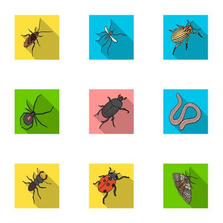 Wasp, bee, ant, fly, spider, mosquito and other insect species.