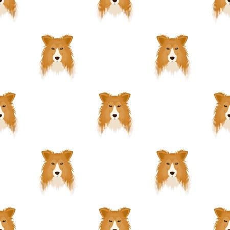 Dog, Collie breed, Scottish Shepherd. Muzzle Collie single icon in cartoon style vector symbol stock illustration web. Illustration