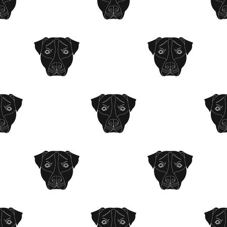 Dog breed single icon in black style vector symbol stock illustration web.