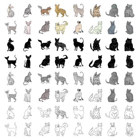 Cat breeds set icons in cartoon style. Big collection of cat breeds vector symbol stock illustration