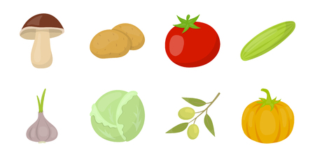 Different kinds of vegetables icons in set collection.