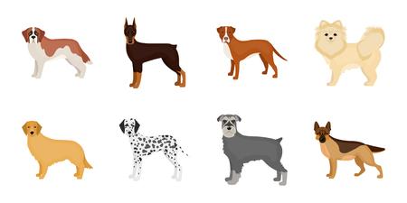 Dog breeds icons in set collection for design.Dog pet vector symbol stock web illustration.