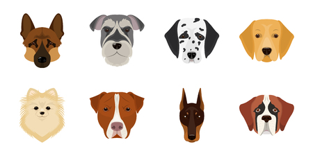 Dog breeds icons in set collection for design.Muzzle of a dog vector symbol stock web illustration.