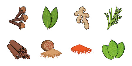 Herb and spices icons in set collection for design.Different kinds of seasonings vector symbol stock web illustration. Ilustracja