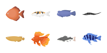 Different types of fish icons in set collection for design. Marine and aquarium fish vector symbol stock web illustration.