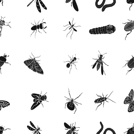 wasp, bee, ant, fly, spider, mosquito and other insect species. Various insects set collection icons in black style vector symbol stock isometric illustration web.