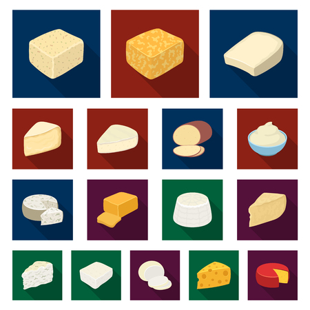 Different kind of cheese flat icons in set collection for design