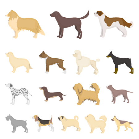Dog breeds cartoon icons.
