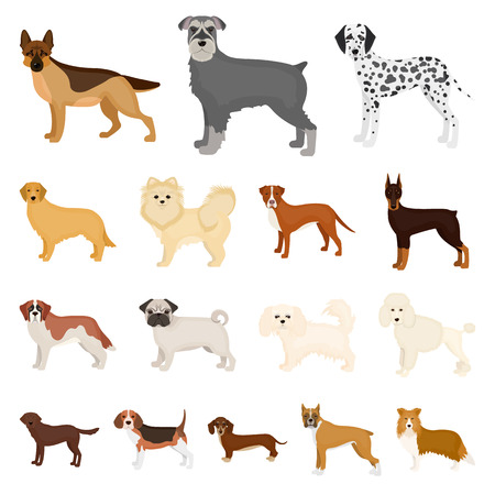 Dog breeds cartoon icons in set collection for design.Dog pet vector symbol stock  illustration. Illustration