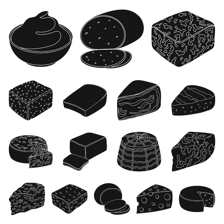 Different kind of cheese black icons in set collection for design.
