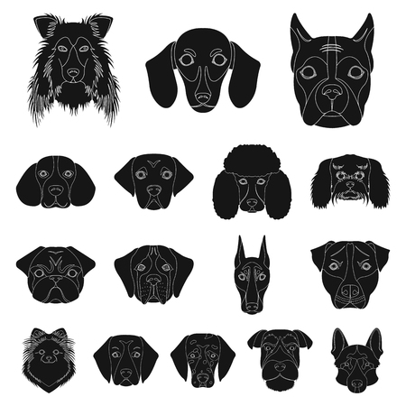 Different breeds of dogs icon set.