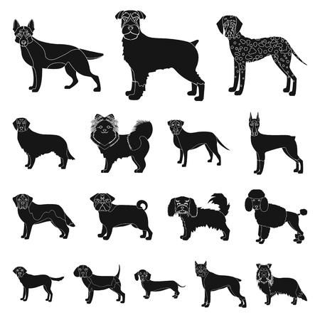 Dog breeds black icons in set collection for design.  イラスト・ベクター素材