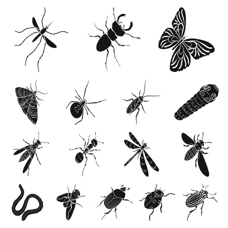Different kinds of insects black icons in set collection for design. Insect arthropod vector isometric symbol stock web illustration. Illustration
