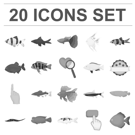 Different types of fish monochrome icons in set collection for design. Marine and aquarium fish vector symbol stock illustration. Illustration