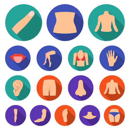 Part of the body, limb flat icons in set collection for design. Human anatomy vector symbol stock  illustration. Иллюстрация