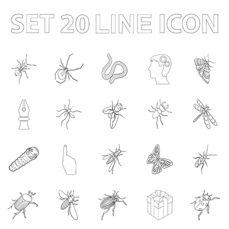 Different kinds of insects outline icons in set collection for design. Insect arthropod vector isometric symbol stock  illustration. Illustration