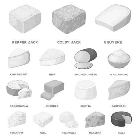 Different kind of cheese monochrome icons in set collection for design.Milk product cheese vector symbol stock  illustration.