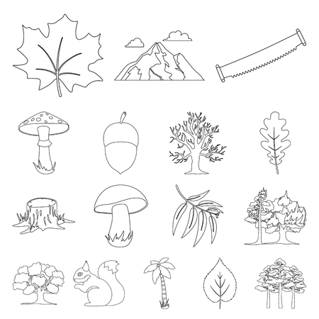 Forest and nature outline icons in set collection for design. Forest life vector symbol stock  illustration.