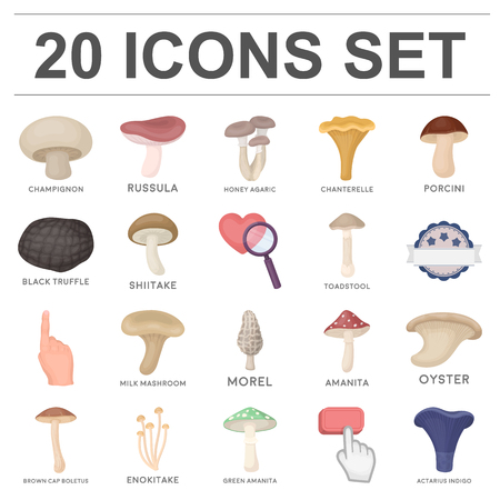 Poisonous and edible mushroom cartoon icons in set collection for design.