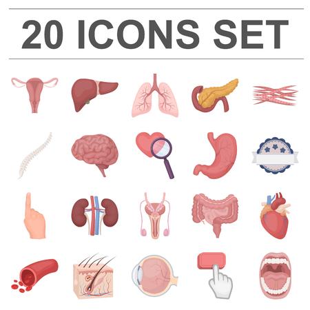 Interne organen van menselijke cartoonpictogrammen in vastgestelde inzameling voor ontwerp. Anatomie en geneeskunde vector symbool stock illustratie.