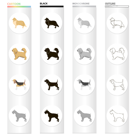 Pointer, dog collie, Scottish shepherd,  breed pekingese.Dog breeds set collection icons in cartoon black monochrome outline style vector symbol stock illustration web. Vettoriali