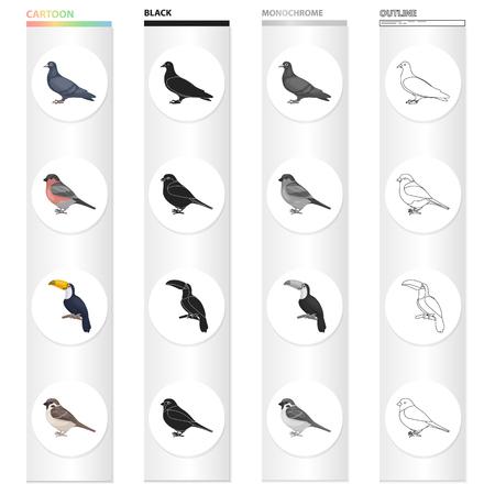 A dove, a song bullfinch, a tropical bird, a tukan, a small orbit. Bird set collection icons in cartoon black monochrome outline style vector symbol stock illustration .